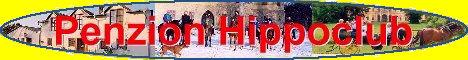Penzion Hippoclub, Lednice na Moravě, ubytování, penzion, restaurace, vinný sklep, koně, kočáry