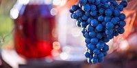 Vinařství Archivní sklepy Valtice