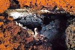 Jeskyně Turold